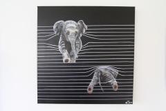Billed-nr.-47-Elefant i persienner
