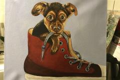 Billed-nr.-83-Hund-i-rødgummisko